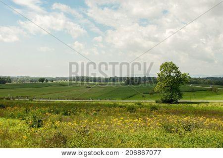 Fields Of Gettysburg Battlefield