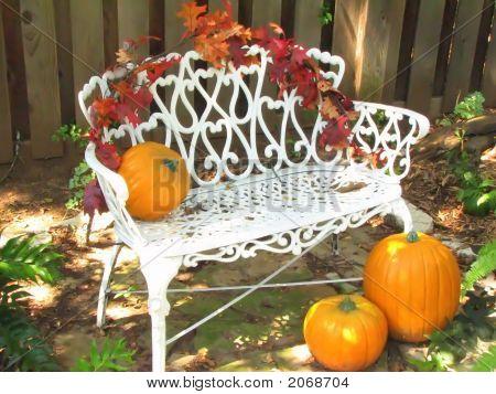 Pumpkins On A White Bench