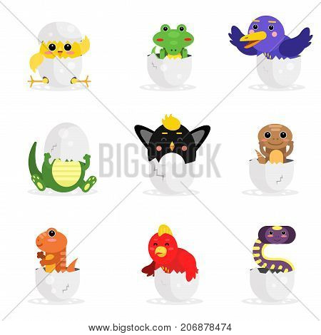 Cute adorable colorful newborn animal characters set, funny reptile and birds in egg shell cartoon vector Illustration on a white background