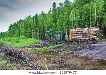 A stuck logging truck loaded with logs at the edge of the green forest Kostroma oblast Russia.