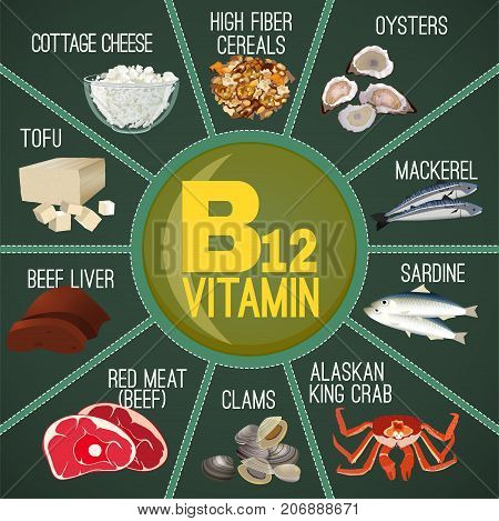 High vitamin B12 Foods. Healthy seafood, meat, fish, crab, cottage cheese and oysters. Vector illustration in diagram style on a green background.