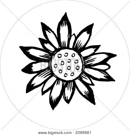 Flower Draw Black And White.Eps