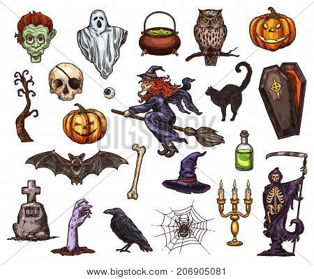 Halloween holiday sketch icon set. Scary ghost, Halloween pumpkin lantern, bat, spider and witch, skeleton skull, zombie and cemetery gravestone, black cat, coffin and grim reaper isolated symbol