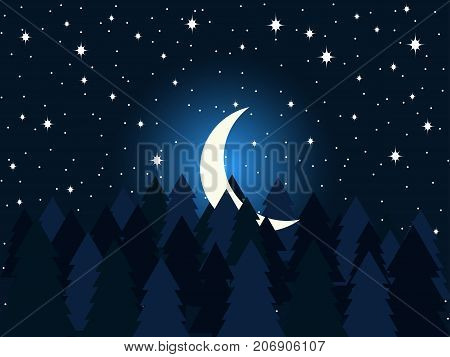 Moon In The Fir Trees Flat. Midnight, A Crescent Moon In The Starry Sky. Spruce Forest. Vector Illus