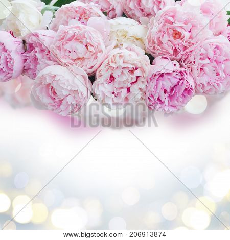 Fresh peony flowers colored in shades of pink close up border, copy space on glitterng bokeh background