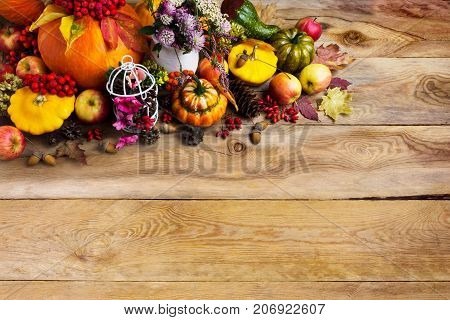 Thanksgiving Background With Pumpkins, Decorated Birdcage, Copy Space