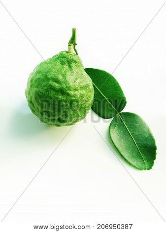 Kaffir Lime or Bergamot on white background