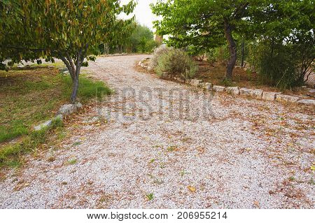 neglected stony route in a countryside with trees