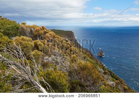 Pristine landscape on Tasman Peninsula, Cape Raoul, view to the Southern Ocean