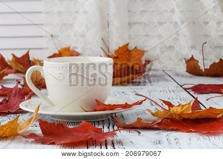 Cup Of Milk Coffee And Colorful Autumn Leaves