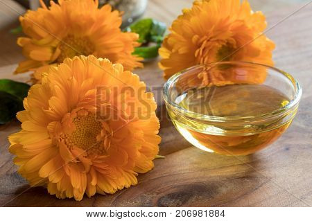 Calendula Essential Oil In A Glass Bowl With Calendula Flowers