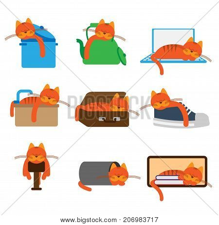 Cat sleeping in differ unusual places.Vector illustration.