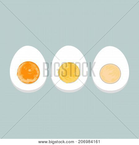Vector colorful illustration of boiled eggs of various degrees.