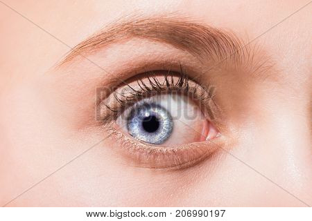Blue eye open close-up. Female beautiful blue eye with eyelashes and eyebrows. The emotion of surprise on the woman's face. Macro human eye the cornea and pupil. Vision and vision problems
