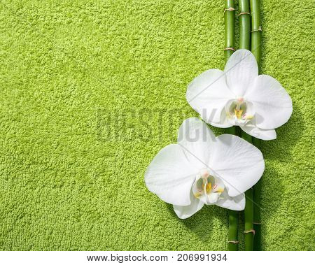 Two white orchids and branches of bamboo lying on light green terry towel.  View from above.