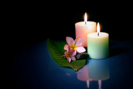 Frangipane Flower With Couple Candle