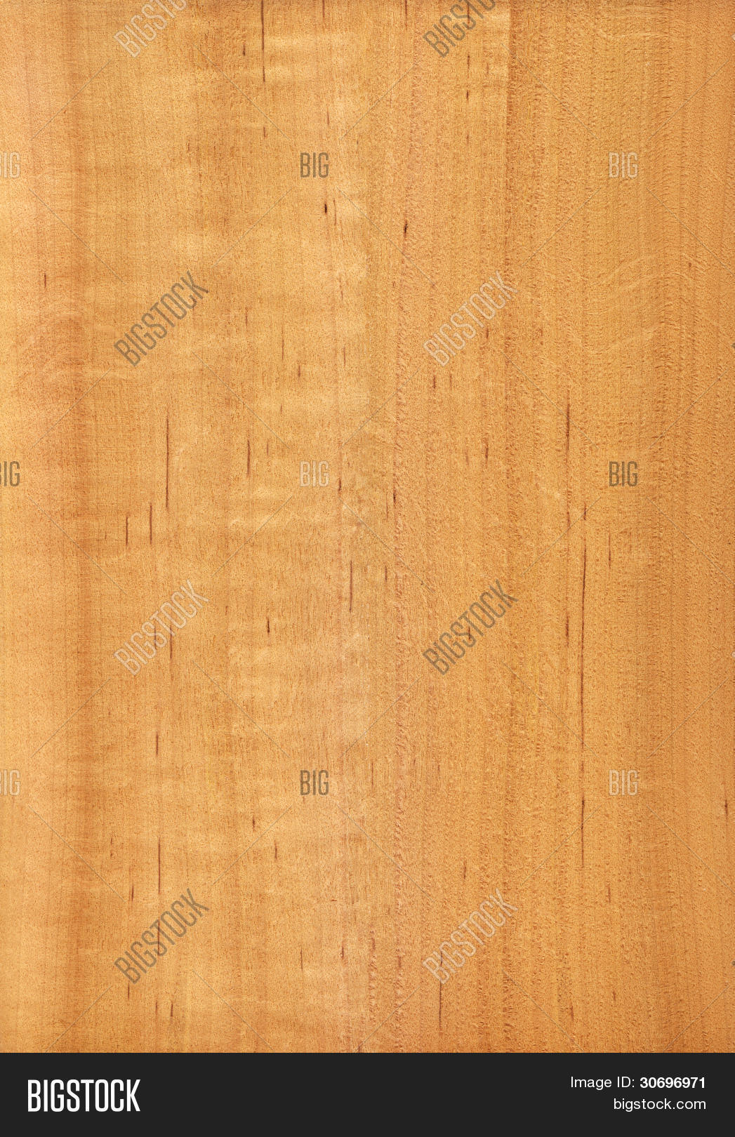 Alder Wood Texture Image Photo Free Trial Bigstock