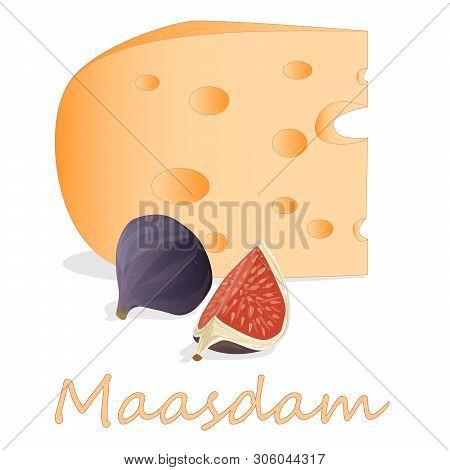 Maasdam Cheese. Illustration Of Maasdam Cheese Isolated On White.