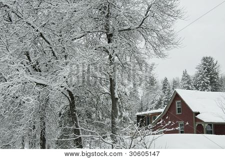 The Red House In The Snow