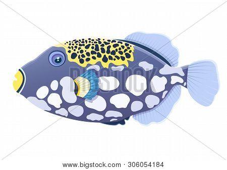 Triggerfish Fish Clown, Flat Cartoon Realistic Drawing, Hand Drawn Sea Animal, Maritime Character. C