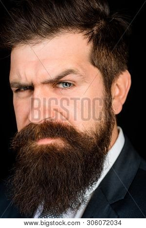 Handsome Man With Beard. Male Fashion Concept. Bearded Man Portrait. Handsome Stylish Bearded Man. S