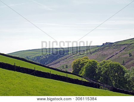 Bright Green Grass Meadows Meadows With Stone Walls On The Sides Of A Valley Near Crimsworth Dean An
