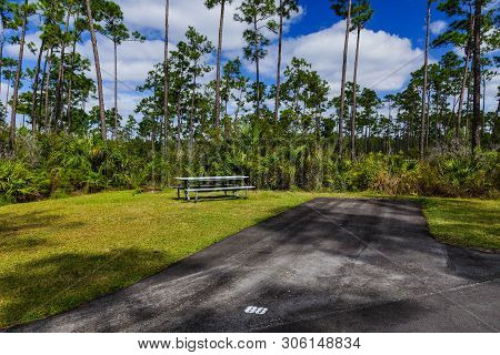 Long Pine Key Campground In Everglades National Park In Florida, United States