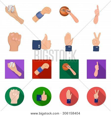 Vector Illustration Of Animated And Thumb Icon. Collection Of Animated And Gesture Stock Vector Illu