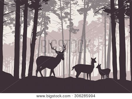 Realistic Illustration Of Mountain Landscape With Coniferous Forest Under Sky With Haze. Deer, Doe A