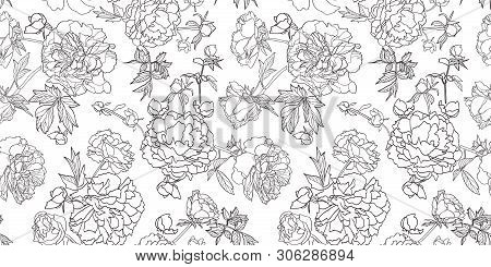 White Vector Repeat Pattern With Black Outline Peony Florals. Japan Inspired Pattern. Perfect For Pa