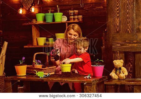 Mothers Day Concept. Mother And Little Son Potting Flower On Mothers Day. Mother And Child Replant F