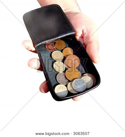 Purse With The Coins