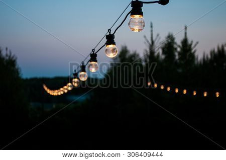 Decorative Light Bulbs Hang On A Tree In The Garden At Night. The Concept Of Pleasant Rest And Parti