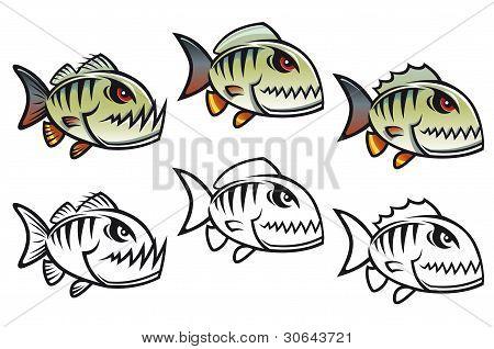 Angry Cartoon Piranha Fish