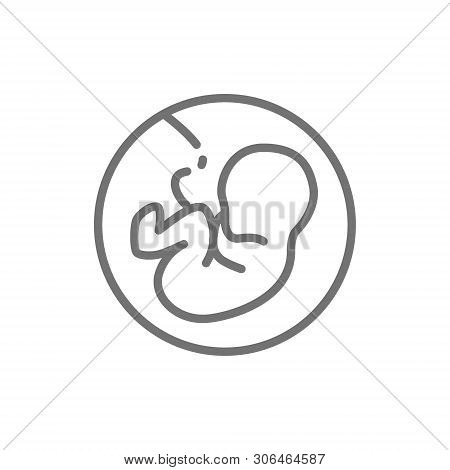 Baby In The Womb, Embryo, Human Fetus Line Icon.