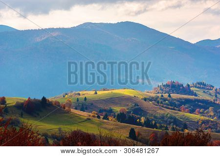 Mountain Rural Area In Late Autumn Season. Agricultural Field On A Hill Near The Forest With Red Fol