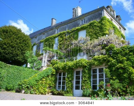 French House With Wisteria