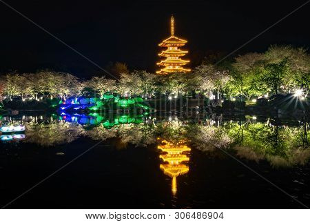 Wuhan-hubei/ China - Apr 01- 2019: The Nightscape At Wuhan East Lake Sakura Garden. This Time Is The