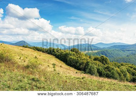 Sunny September Countryside In Mountains. Deciduous Trees On The Grassy Meadow. Fluffy Clouds On A T