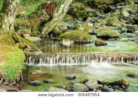Refreshing Stream In The Forest. Beautiful Nature Scenery In Summertime. Rocks Among The Brook With