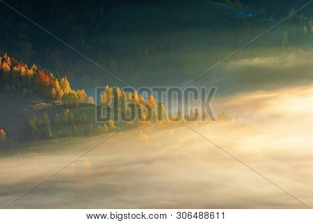 Glowing Fog At Sunrise In Mountains. Wonderful Autumn Nature Background. Mixed Forest On Near On The