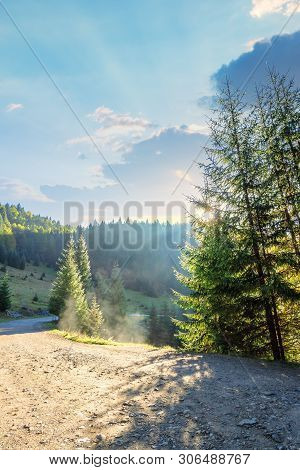 Country Road Through Forest In Mountains. Nature Scenery With Glowing For In Rising Sun Rays. Spruce