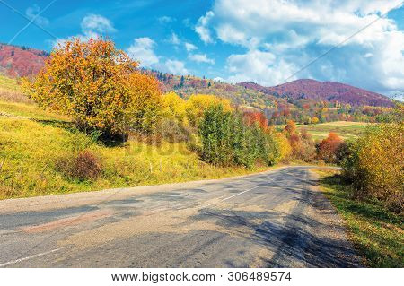 Old Cracked Country Road In Autumn. Traditional Carpathian Countryside. Warm Sunny Day. Trees In Col
