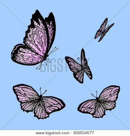 Flying Butterflys On A Blue Background. Morpho. Monarch Butterfly. Design With Butterflies