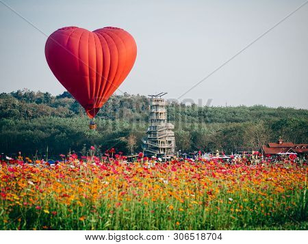 Red Hot Air Balloon In The Shape Of A Heart Over Cosmos Flower Field