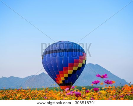 Colourful Hot Air Balloon Flying At  Singh Park In Chiang Rai, Thailand.