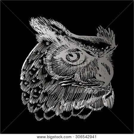 Black And White Illustration Of An Psychodellic Owl. Ornament, Pattern, Night, Planets. Chalk On A B