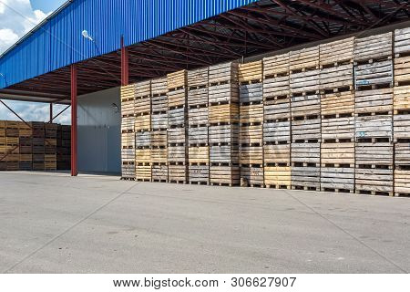 Rows Of Wooden Crates Boxes And Pallets For Fruits And Vegetables In Storage Stock. Production Wareh