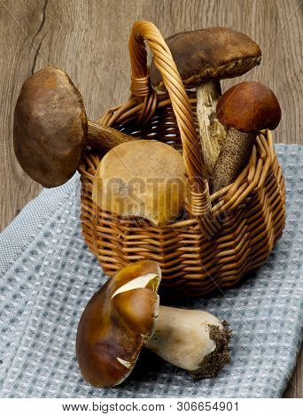 Wicker Basket With Various Raw Porcini Mushrooms And Orange-cap Boletus On Blue Napkin Closeup On Wo