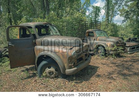 Old Rusty Trucks And Cars In Florida, Usa